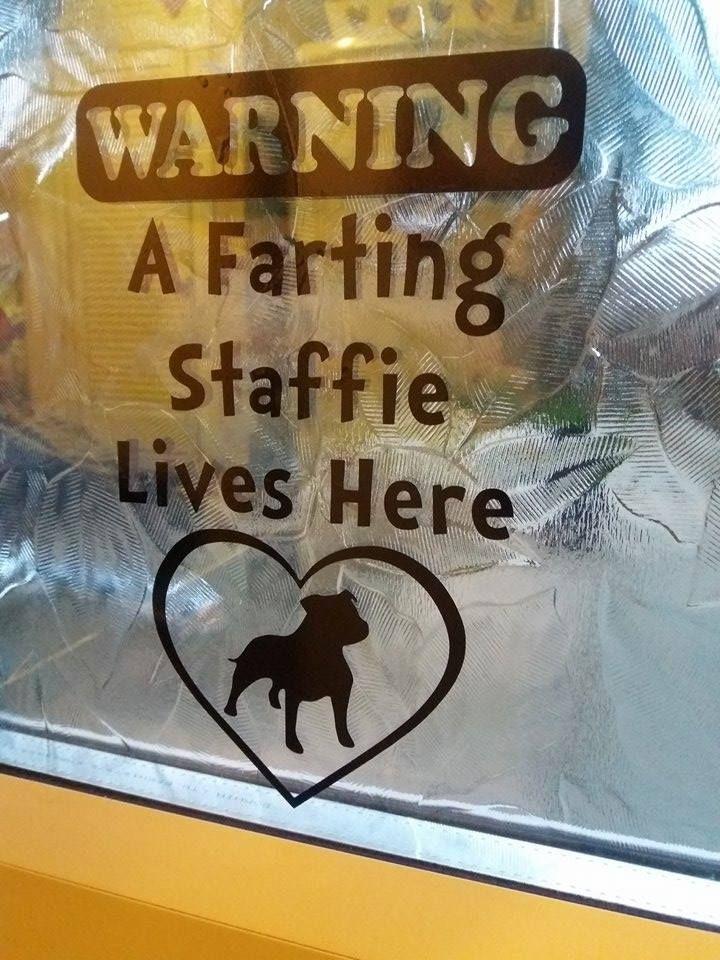 A Farting Staffie Lives Here Window Door Or Fridge